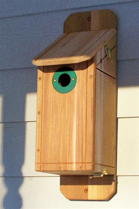 bluebird house plans hole size