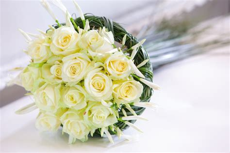 Fresh Flowers by How To Look After Your Delivered Fresh Flower Bouquet