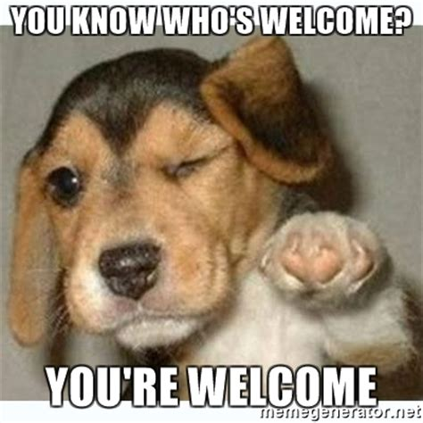 You Are Welcome Meme - you know who s welcome you re welcome fist bump puppy