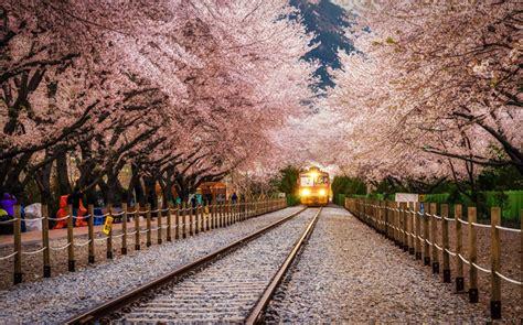 beautiful places  korea incredible snaps