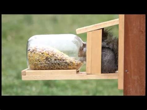 duncrafts squirrel jar feeder  youtube