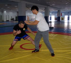 the wrestlerã s dissertation shanghai of sport phd in wushu and western books january 2014 monk in asia