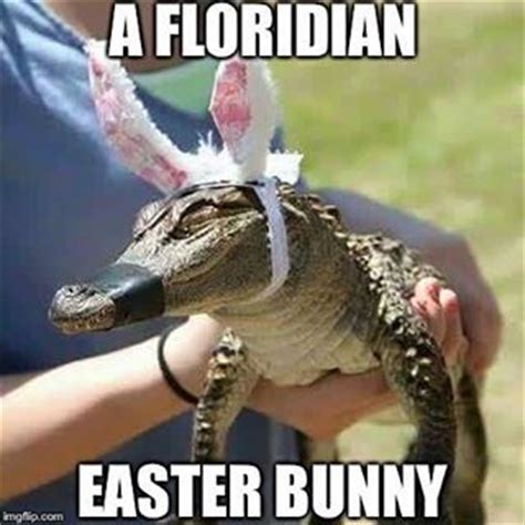 Funny Easter Bunny Memes - springbreak summer florida flogrown on instagram