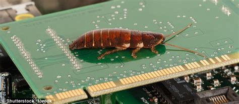 Sony's PS4 can become infested with cockroaches   Daily