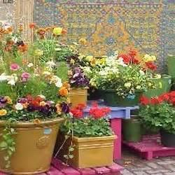 Garden Center Chicago Gethsemane Garden Center Andersonville Chicago Il