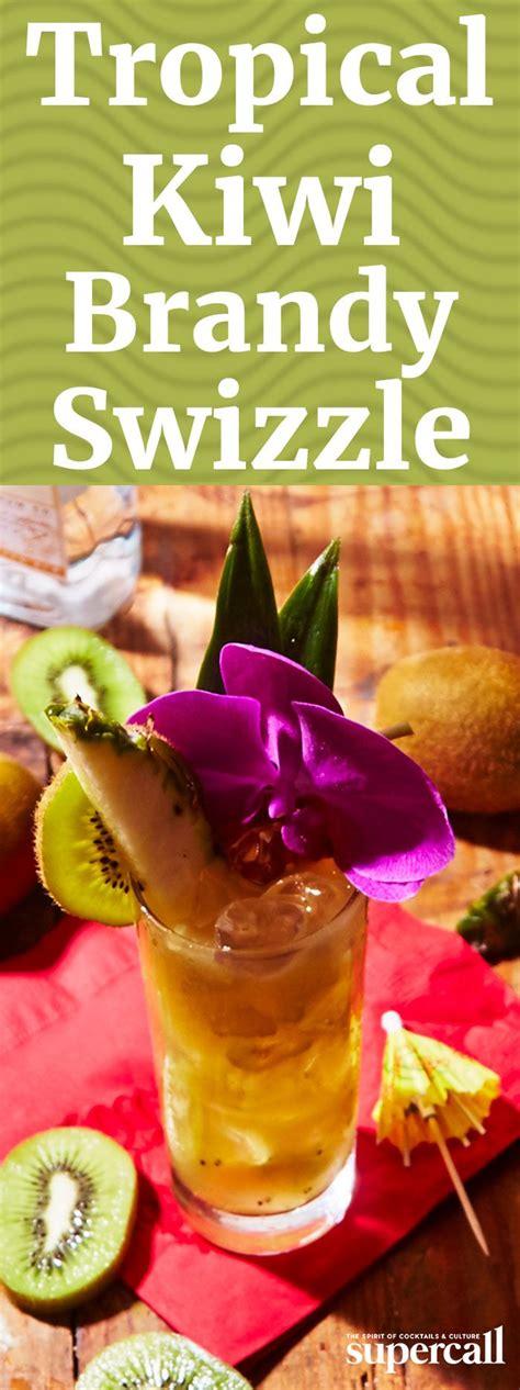 Juicer Alper best 25 cocktail ingredients ideas on popular