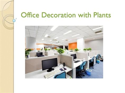 office plant decoration kl office decoration with plants