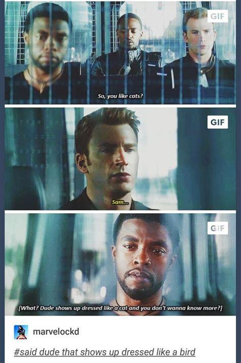 The Avengers Memes - 95 best avengers civil war images on pinterest marvel universe funny stuff and marvel avengers