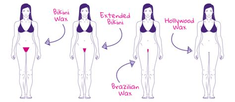 exles of pubic hair waxing how many types of bikini waxing for ladies wallpapers free