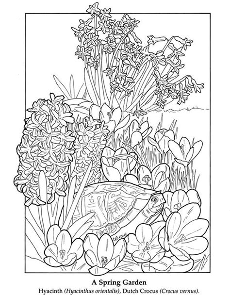 faerie garden spring colouring 1908072806 1000 images about coloring pages on dovers gel pens and free printable coloring pages