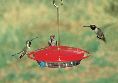 aspects hummzinger mini hummingbird bird feeder