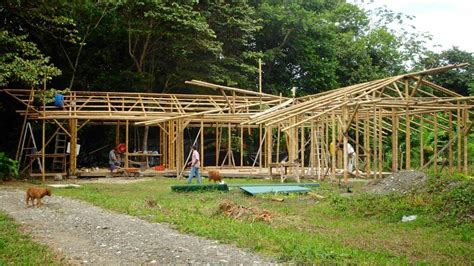build a bamboo house small bamboo houses pictures of the reality about building with bamboo guadua bamboo