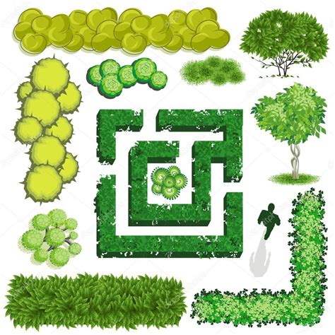 Landscape Design Vectors Trees And Bush Item Top View For Landscape Design Vector