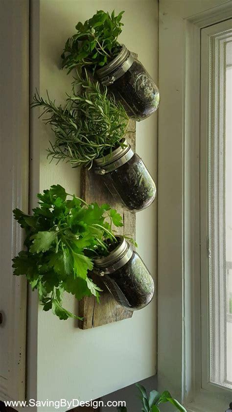 indoor wall herb garden  enjoy fresh