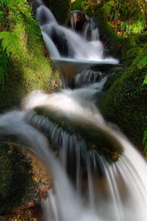 monte aloia nature park espanha luces y sobras lights and shadows spain beautiful
