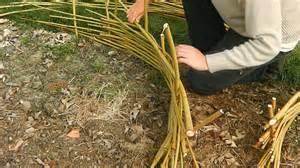 jardinage comment fabriquer une bordure en plessis