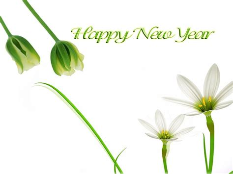 new year flower wallpaper happy new year wishes pictures page 4