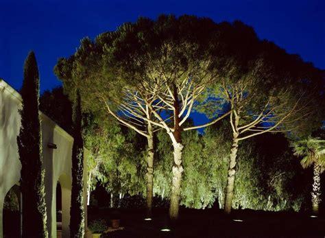 illuminazione alberi illuminare un giardino foto design mag