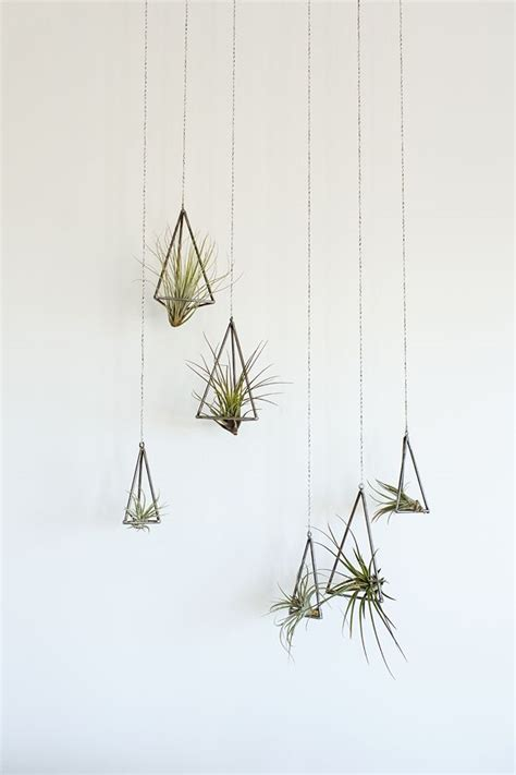 hanging air plant triangle hanging planters for the home pinterest