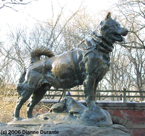 balto the balto