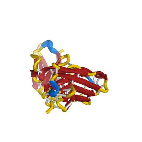 pattern recognition receptors youtube immunoglobulin fold nih 3d print exchange