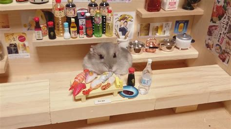 Hamster Kitchen by Hamster Bartenders Serving Tiny Food And Drinks