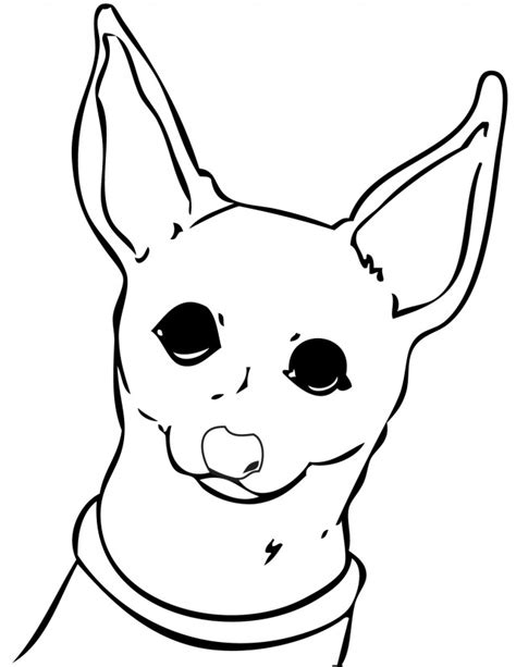 coloring pages chihuahua dogs chihuahua coloring pages for kids az coloring pages