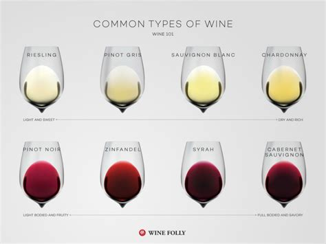 light wine for beginners wine basics a beginner s guide to wine wine folly