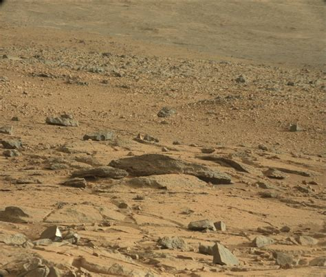from mars ferret photographed on mars by curiosity feb 27 2013