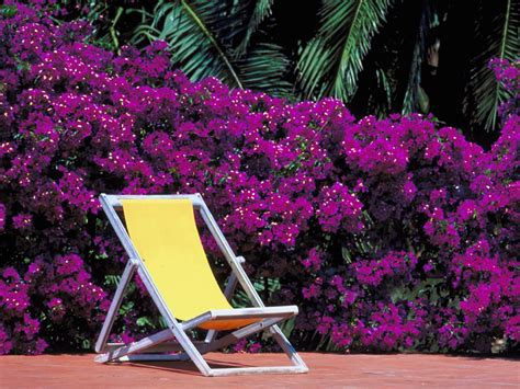 purple patio furniture cleaning outdoor furniture diy