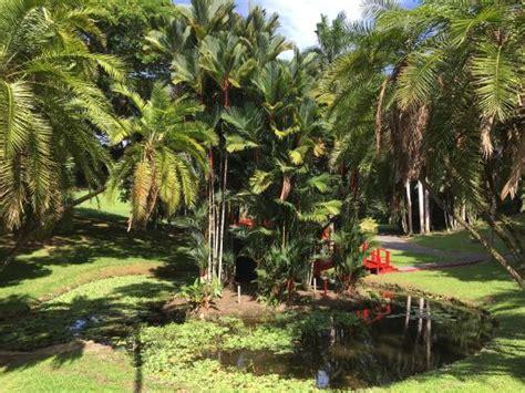 Jardin Botanical Gardens Botanical Gardens Picture Of Jardin Botanico San Juan