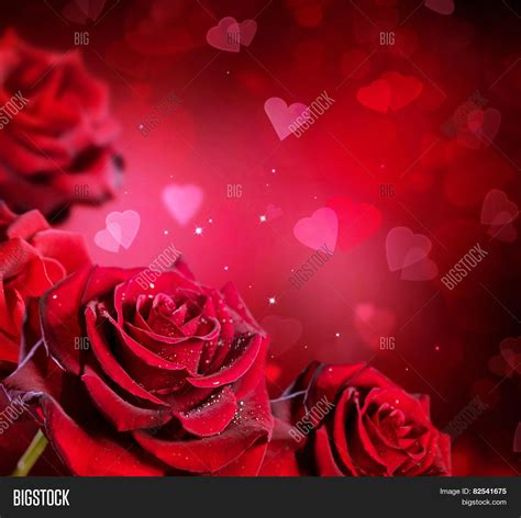 background design red rose roses hearts background valentine image photo bigstock