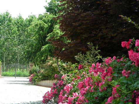 fiori e piante bologna vivaio con vendita di piante e fiori bologna