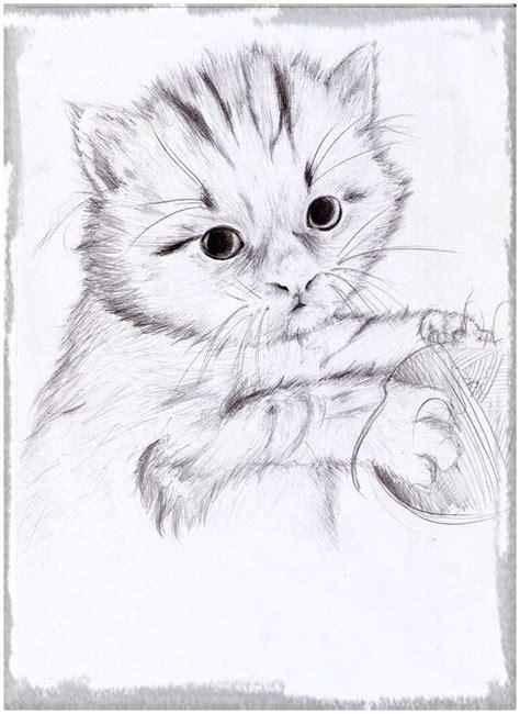 imagenes a lapiz de gatos los mejores dibujos gatitos tiernos gatitos tiernos