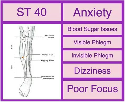 Dizziness And Sugar Detox by St 40 Anxiety Blood Sugar Issues Phlegm Dizziness Poor