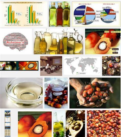 Minyak Zaitun Buat Masak minyak zaitun untuk masak vs minyak sawit olive asli