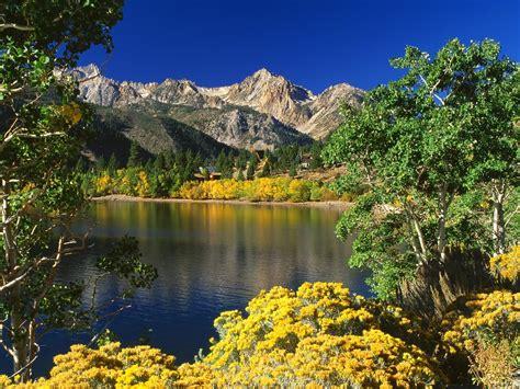 beautiful nature images nature