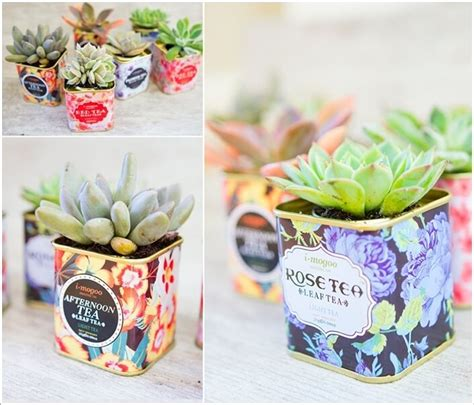 cool planters 10 cool succulent planter ideas for your home