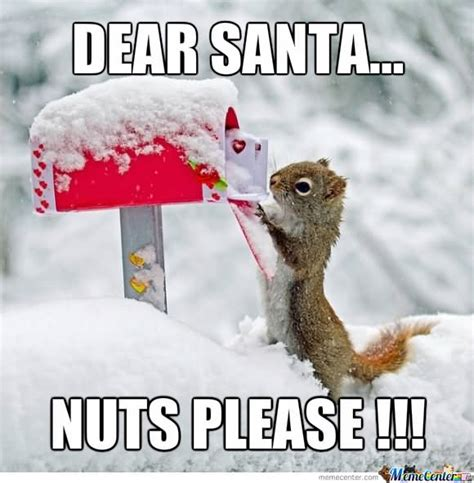 Nuts Meme - funny nuts meme pictures to pin on pinterest pinsdaddy