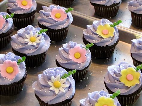 little cakes cupcake kitchen