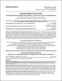 executive resume professional resume sles executive resume professional resume sles