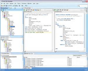 Sql Programmer Description by Web Development Looking For Oracle Database And Management Tool For Developing Software