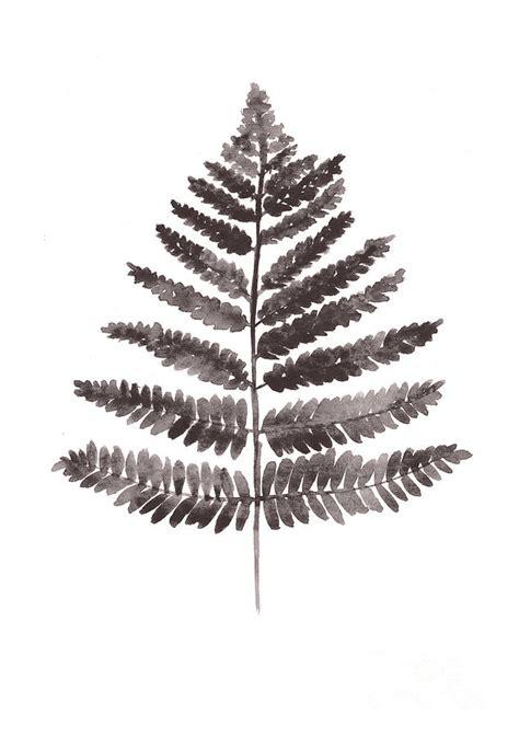 fern leaf watercolor art print painting  joanna szmerdt