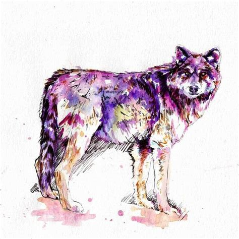 watercolor tattoos wolf watercolor wolf ideas
