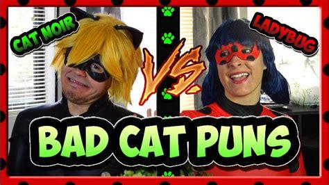 bad cat puns miraculous ladybug  cat noir youtube