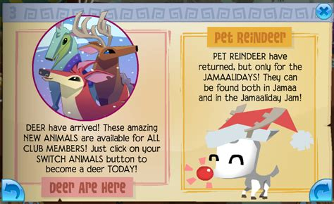 Kangaroo Animal Jam Gift Card - animal jam community blog animal jam cheats 2016 animal jam codes animal jam
