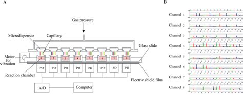 rail cl diode array diode array wiki 28 images how an led works spectrometer gallery pin diode radiation
