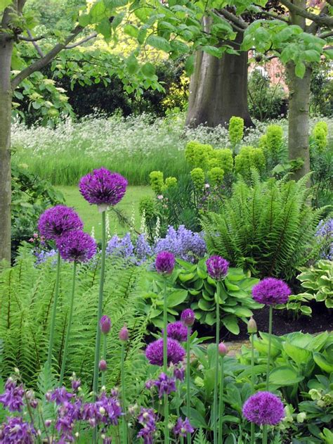 purple flower garden 17 best images about garden pretty combinations on