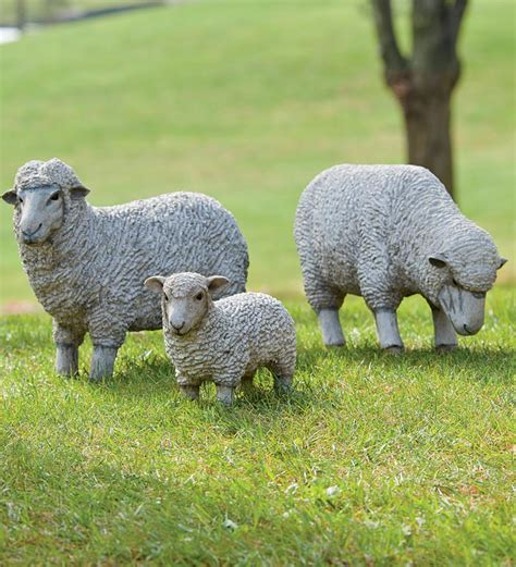outdoor resin sheep and lamb lawn statues why must they