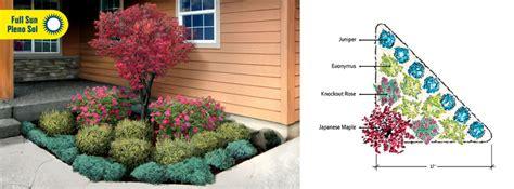 Landscaping Ideas Evergreen Shrubs Evergreen Shrub For Corner Of House Landscape Garden